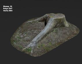 Photoscanned stump 16 3D model