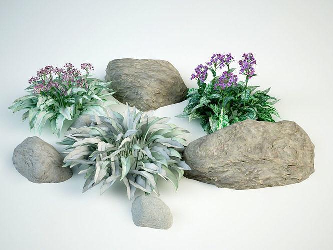 lungwort pulmonaria set 3d model max obj mtl 3ds fbx 1