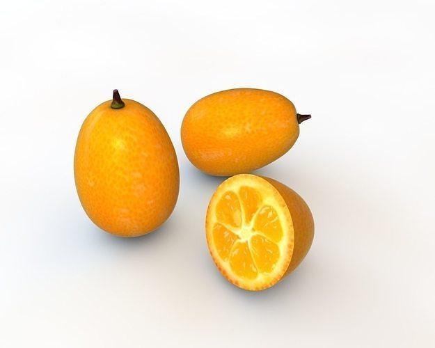 kumquat fruit 3d model obj mtl 3ds fbx c4d stl dae 1