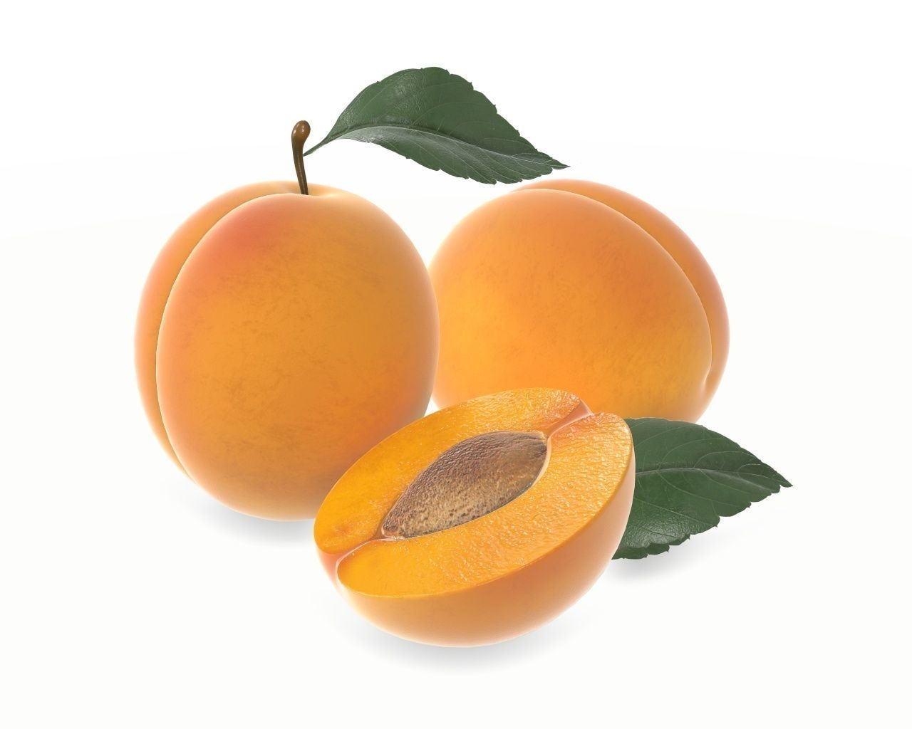 apricot fresh cut fruits with leaf