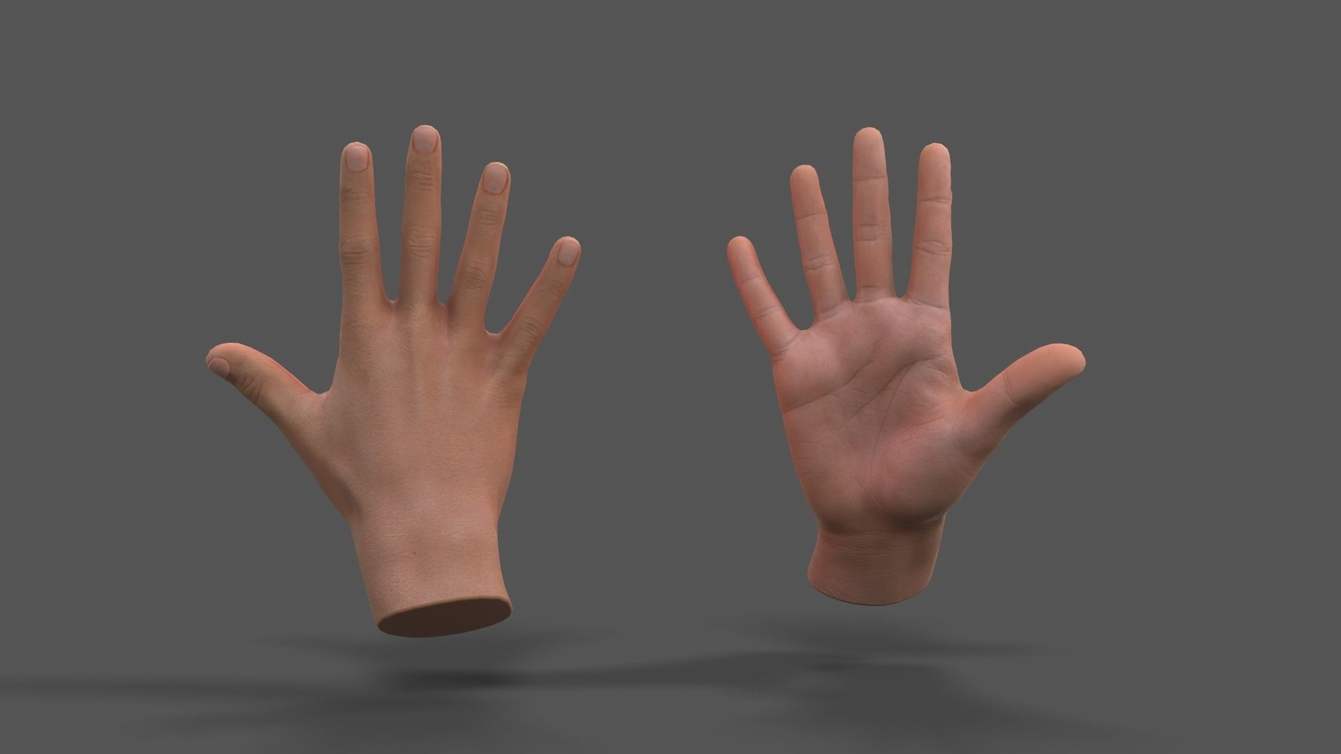 VR Hands - Male Hands