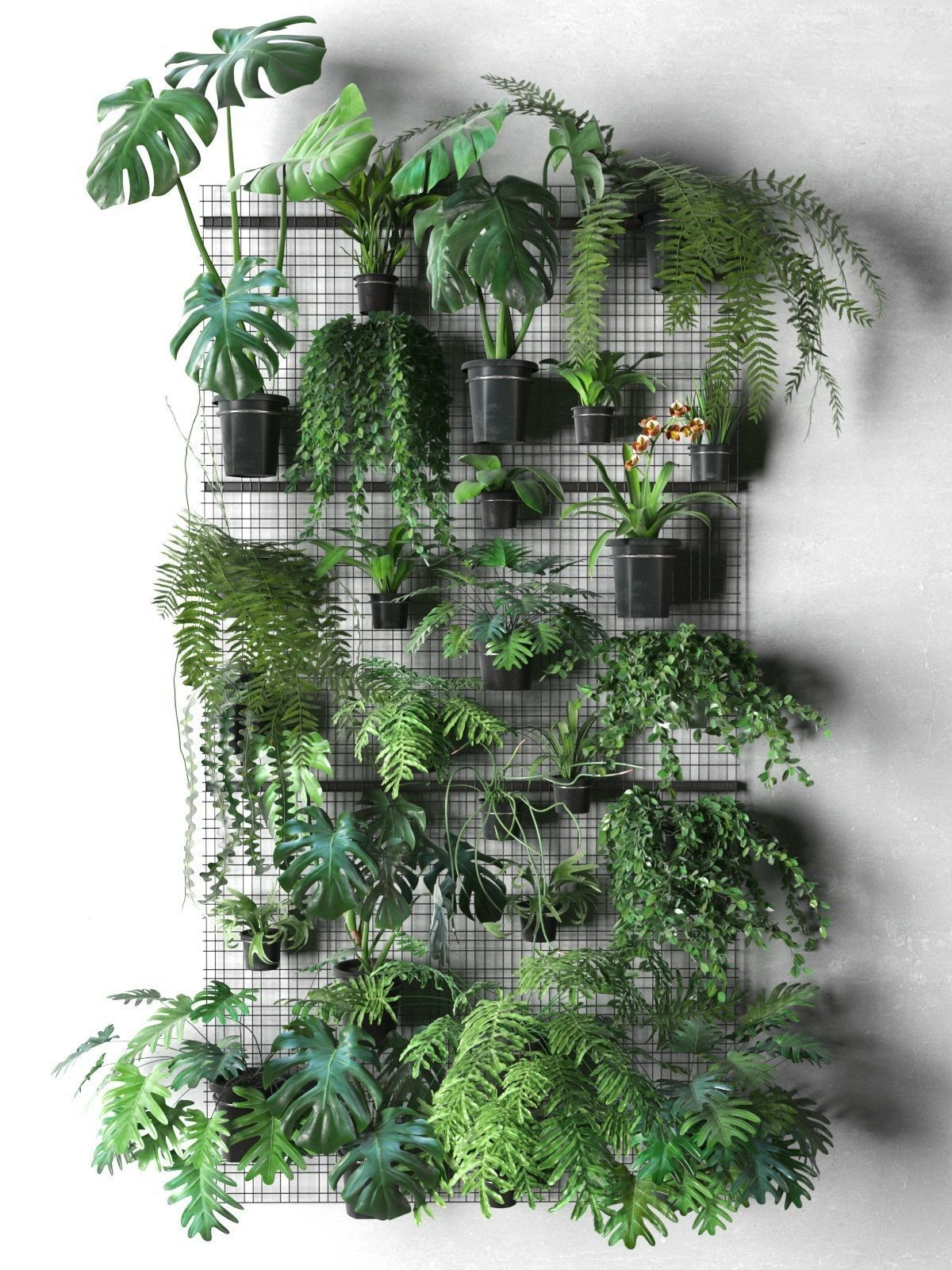 Wall Grid with Pot Plants