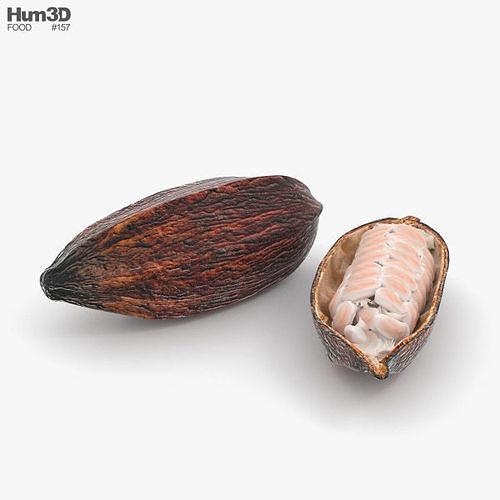 cocoa pod 3d model max obj mtl 3ds fbx c4d lwo lw lws 1