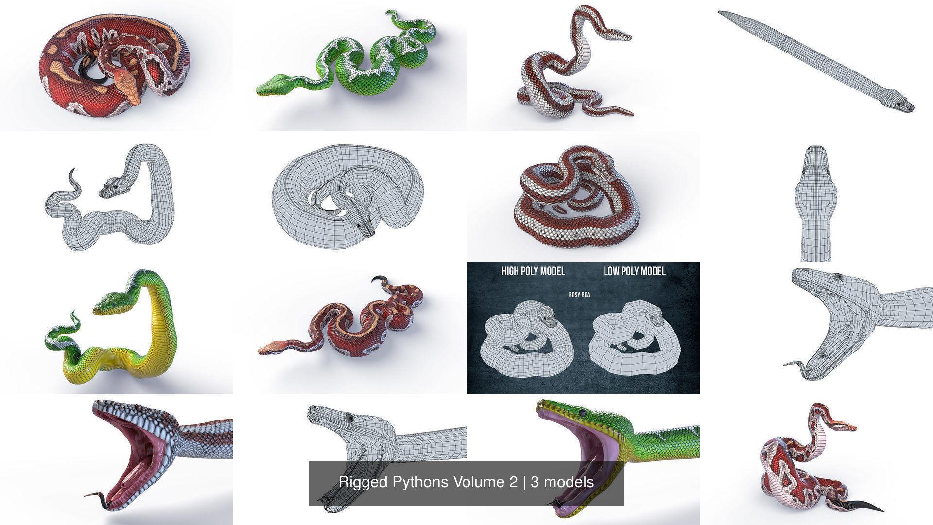Rigged Pythons Volume 2
