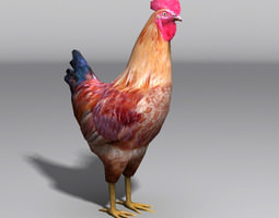 rooster 3d asset game-ready
