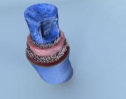 3D flow Structure of a Normal Heart Vein