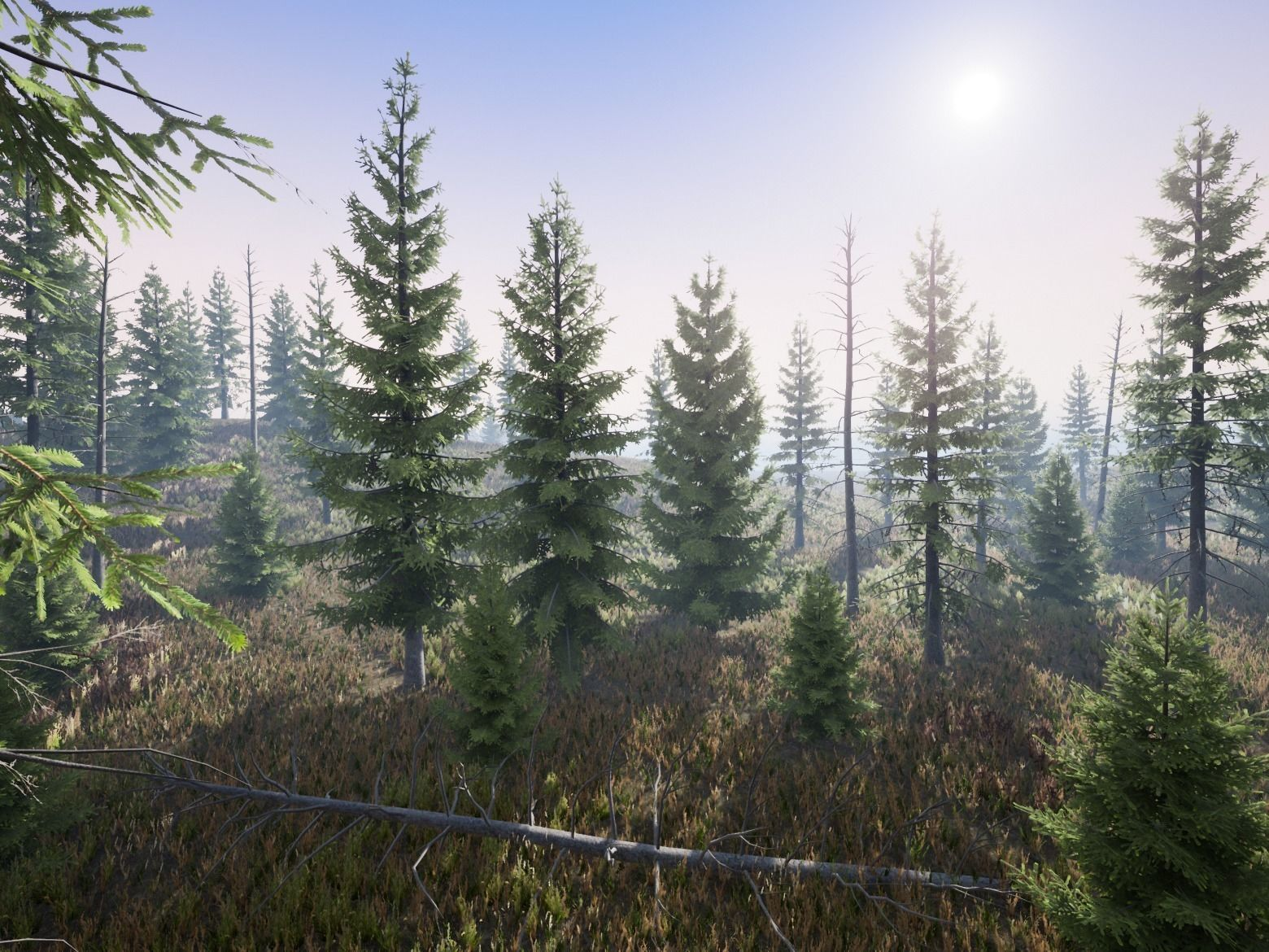 Realistic Spruce Fir Trees for games