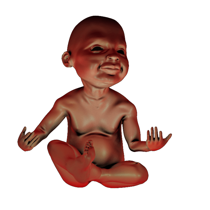 PRINT READY BABY SEATED 1