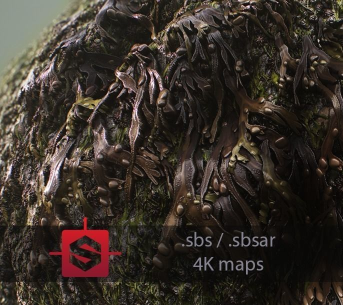 Seaweeds On Rock Tileable PBR Material