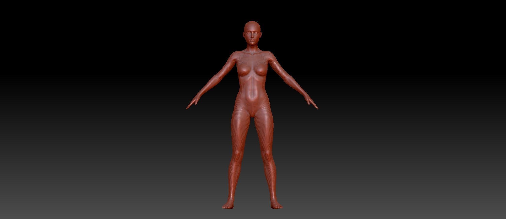 Base female Anatomy