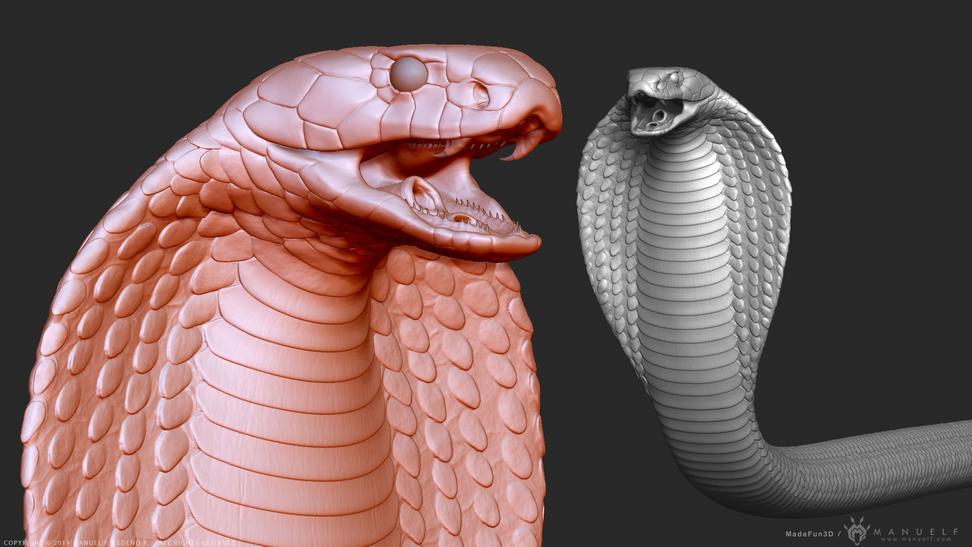 king cobra snake highpoly sculpture 3d model obj mtl ztl zbp cob scn rsobj rsscn
