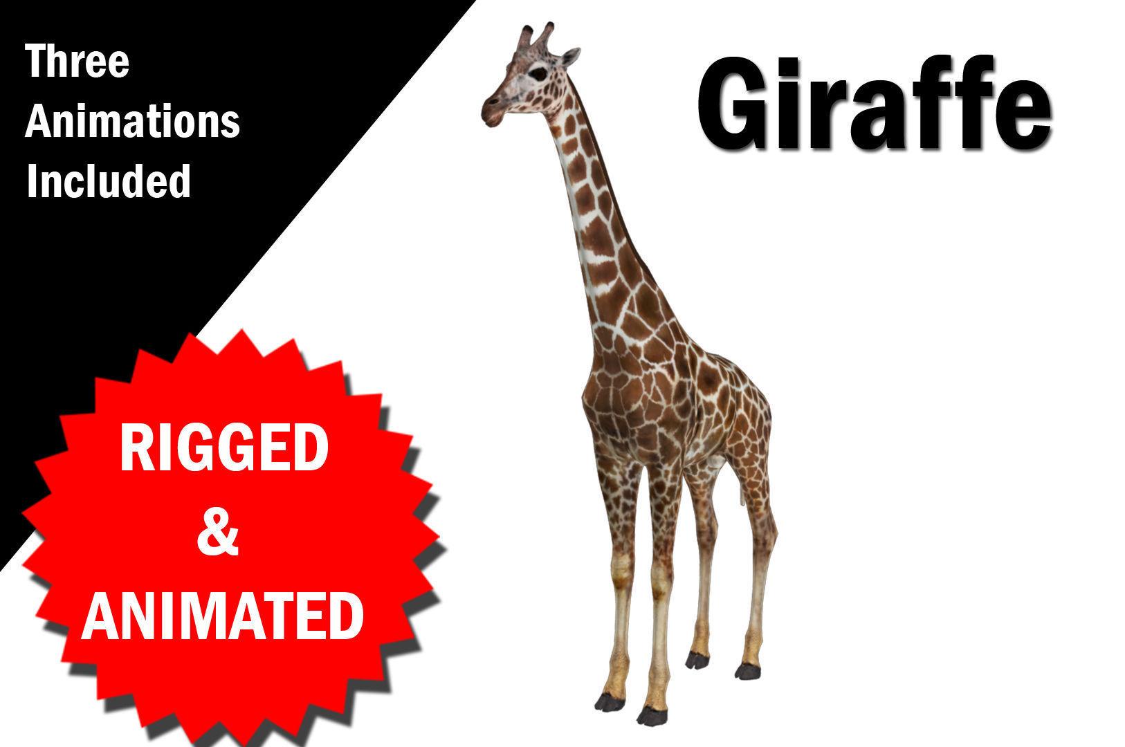 Giraffe Rigged and Animated