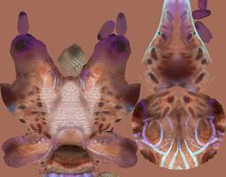 3d model creature cartoon  salamander rigged asset low-poly