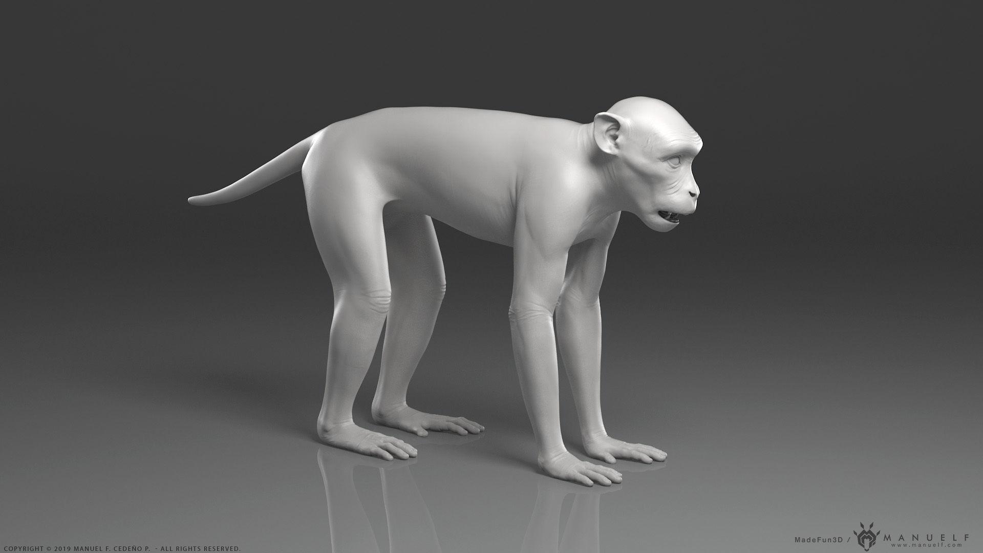 Rhesus Macaque Monkey - Highpoly Sculpture