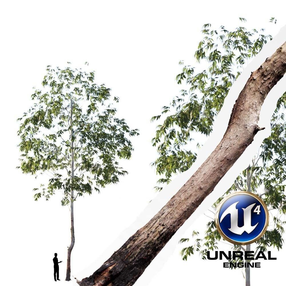 Realistic Tree 05- UE4 Asset and FBX Files animated 2