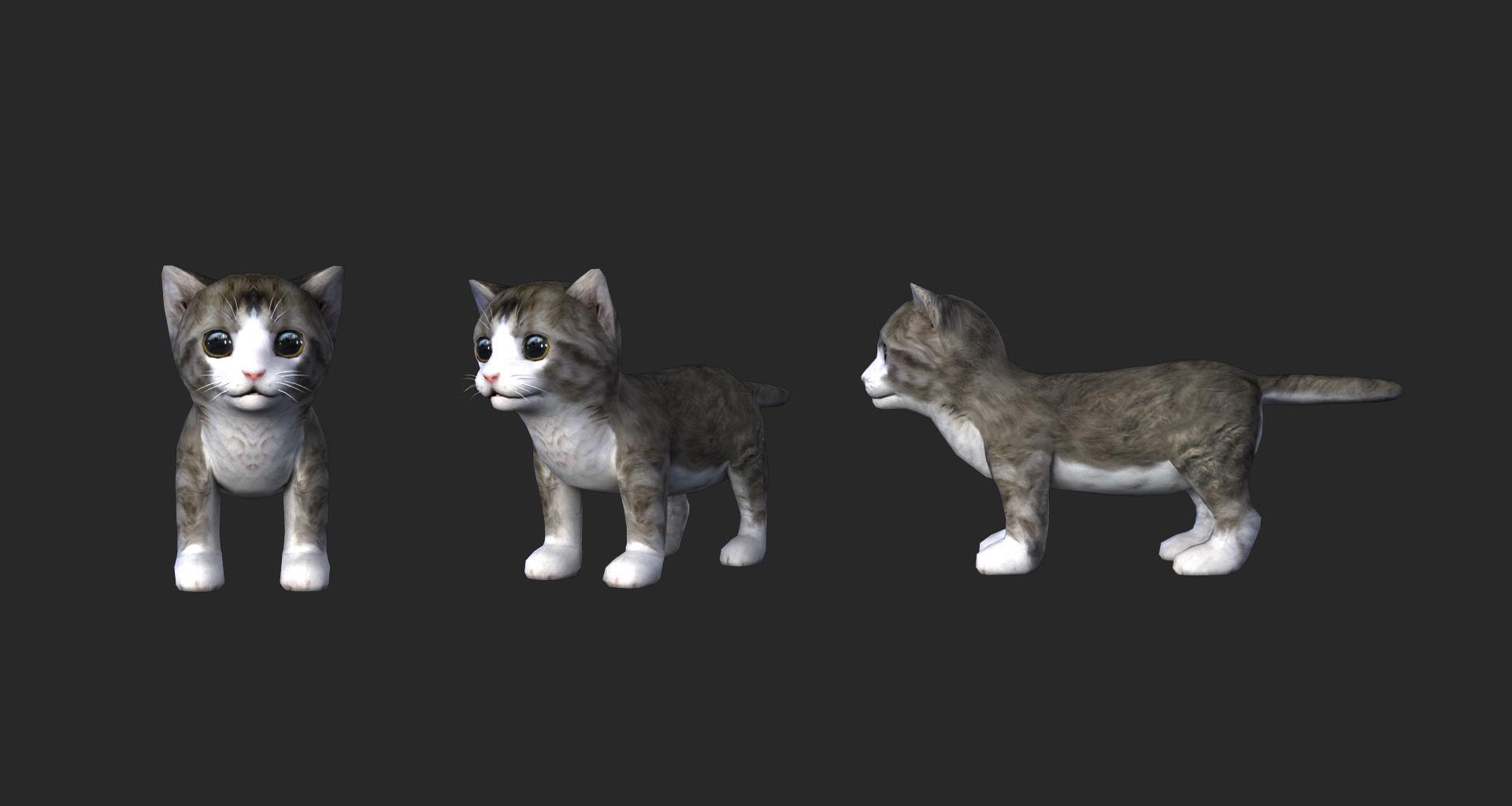 Cute cat 3D model material file