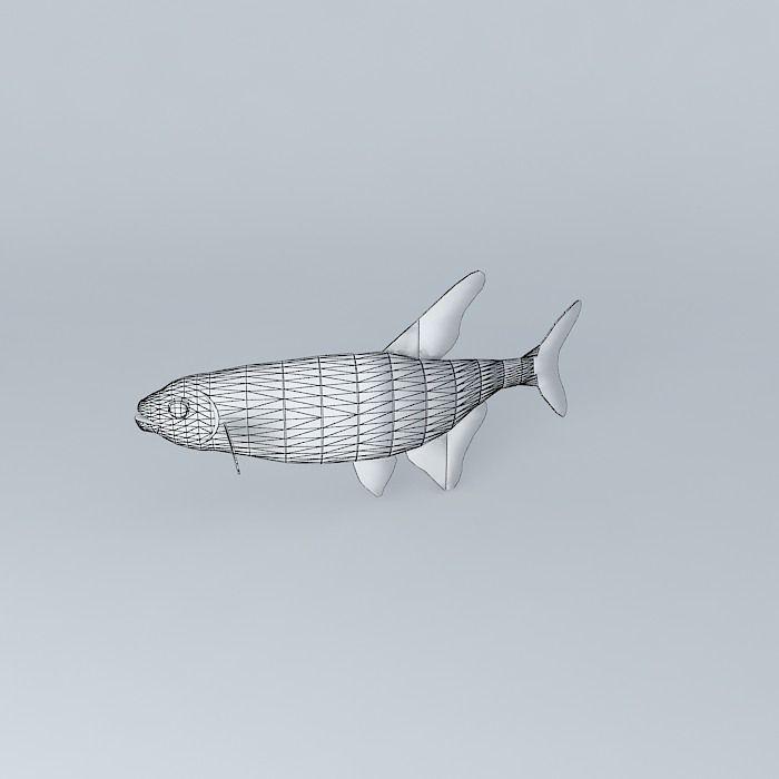 neon tetra fish 3d model max obj 3ds fbx stl skp 5