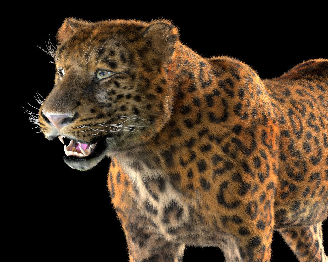 Leopard Rigged Hairs | 3D model