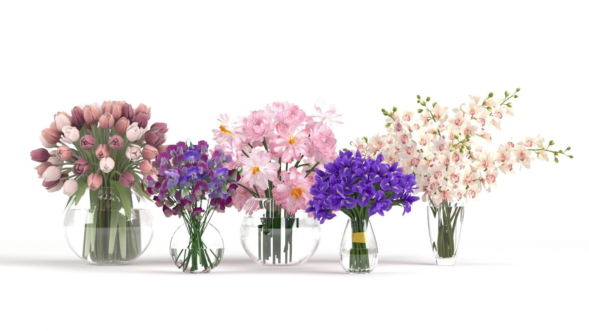 Collection Of Flowers In Pots 3d Model Cgtrader