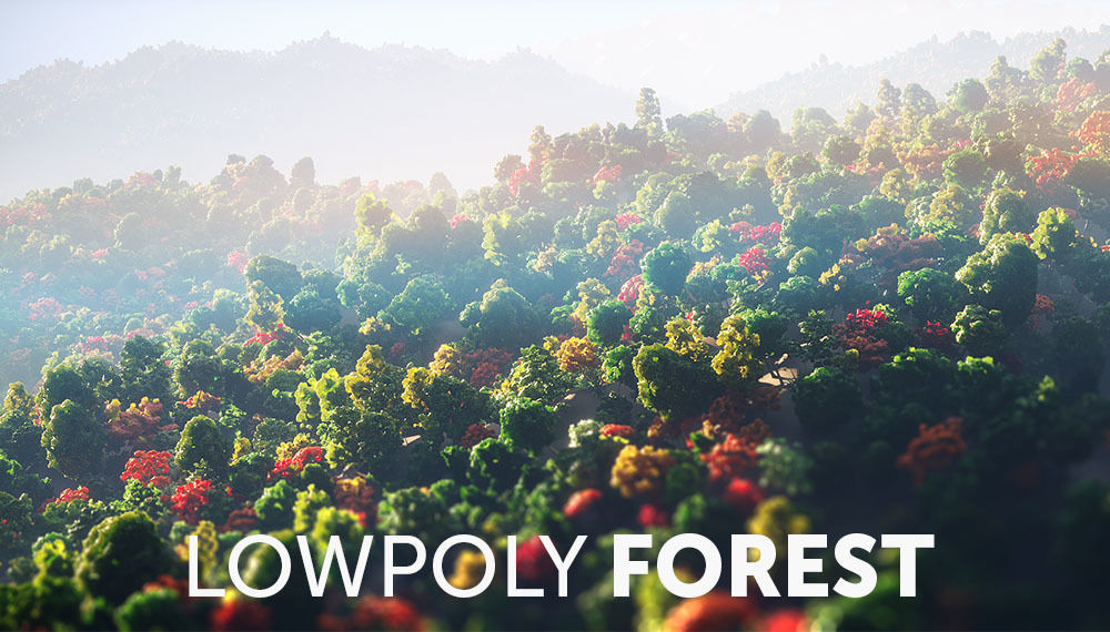 Low Poly Forest Summer Autumn Winter Stylish