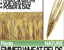Emmer Wheat Fields Poser DAZ VFX Animation 3D Model