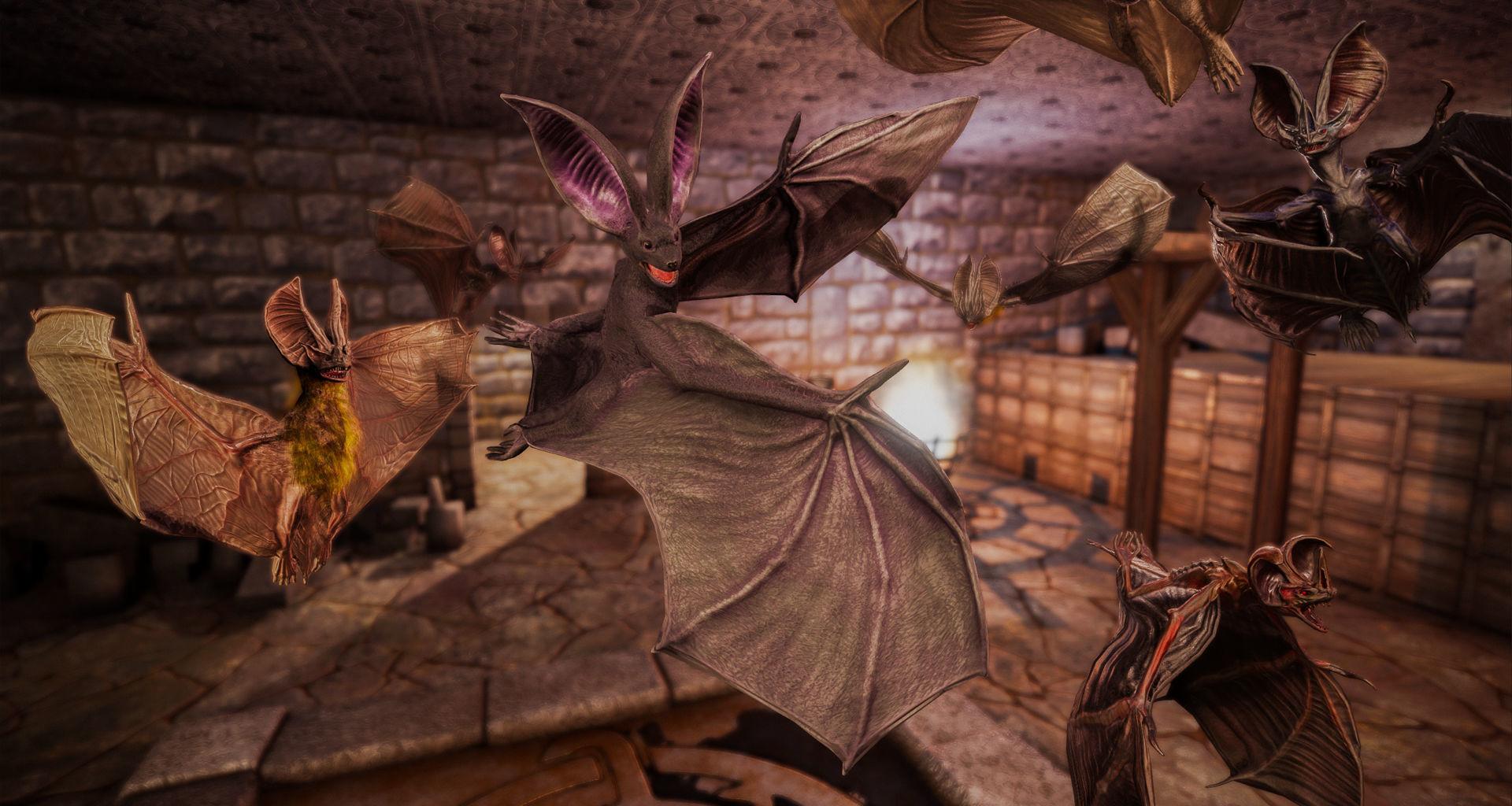 Bats Pack PBR