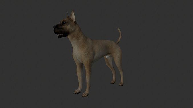 ANML-020 Dog Animated