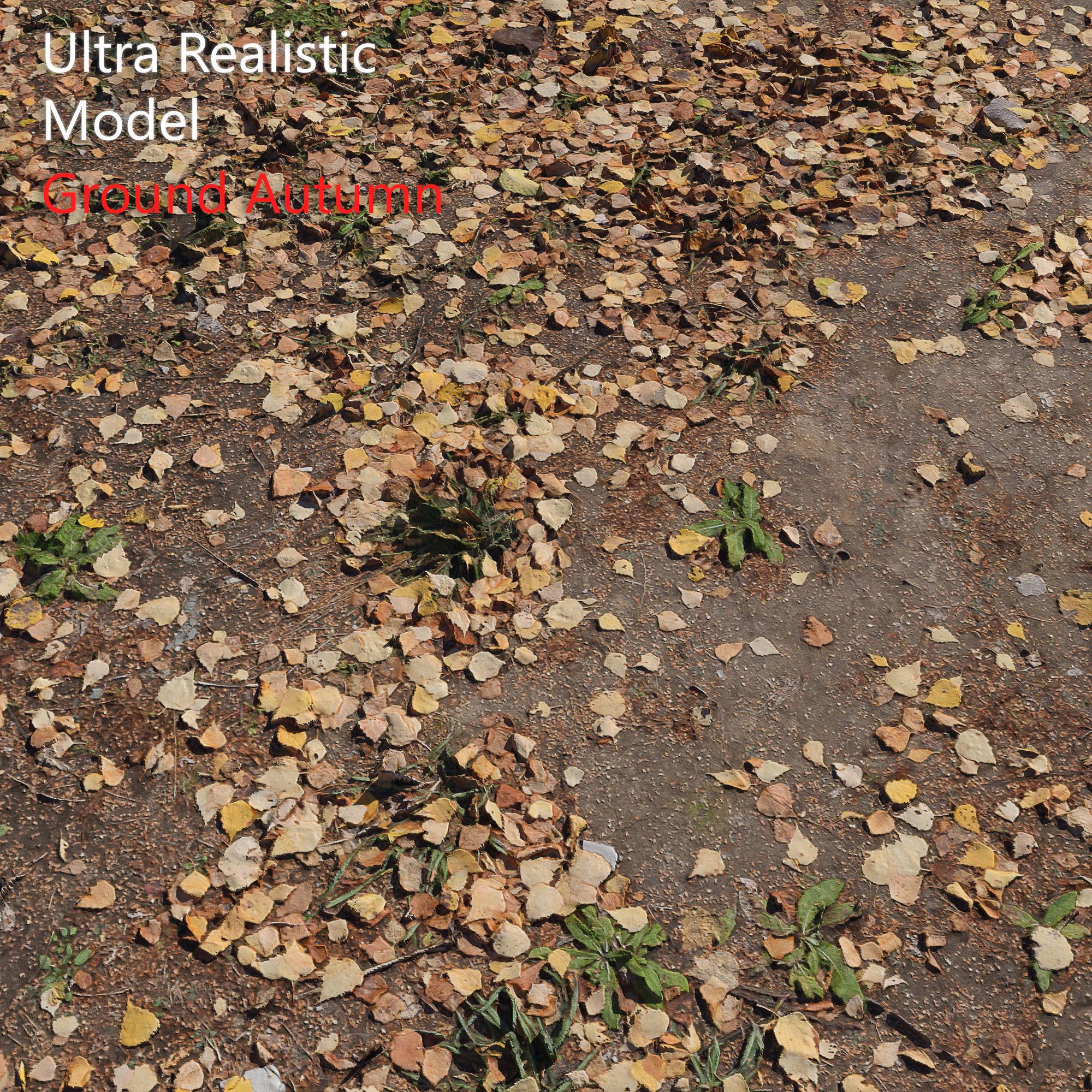 Ground autumn scan 2