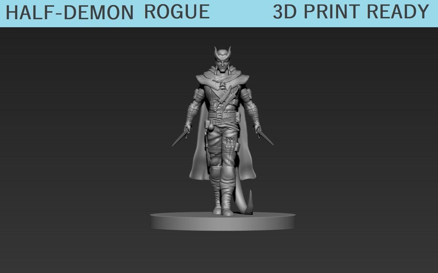 Half-Demon Rogue Miniature