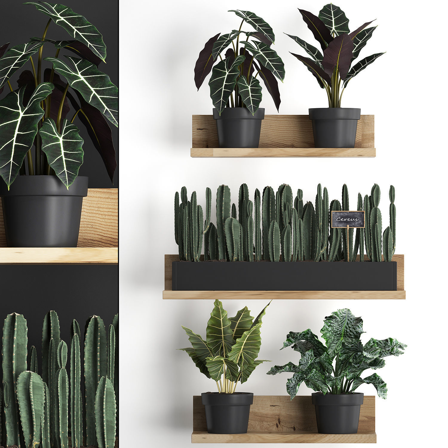 Plant set wall decor vertical garden 399
