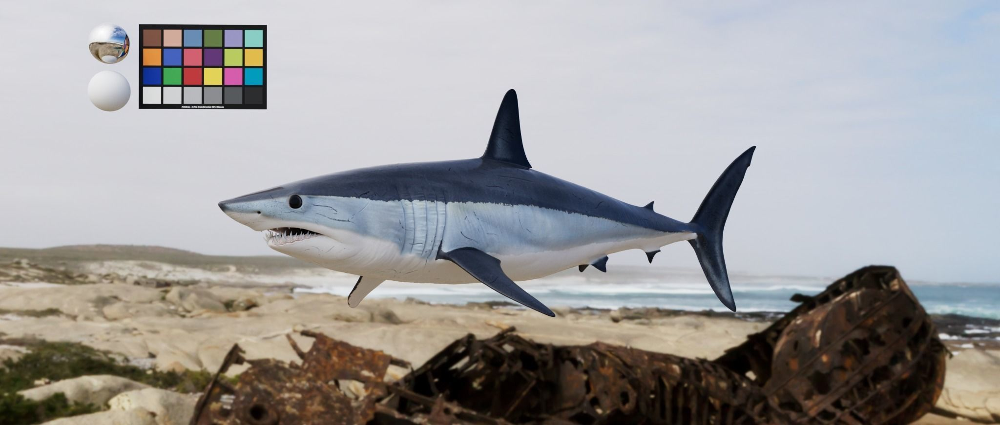 Shark  Mako model with materials