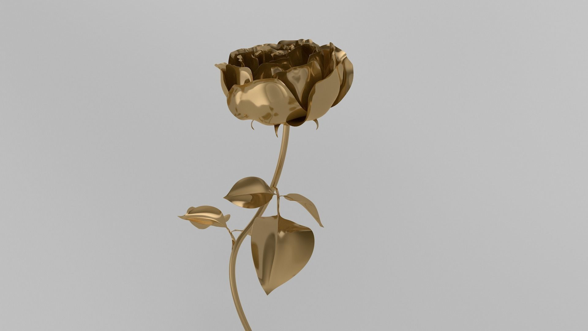 Golden Rose animation