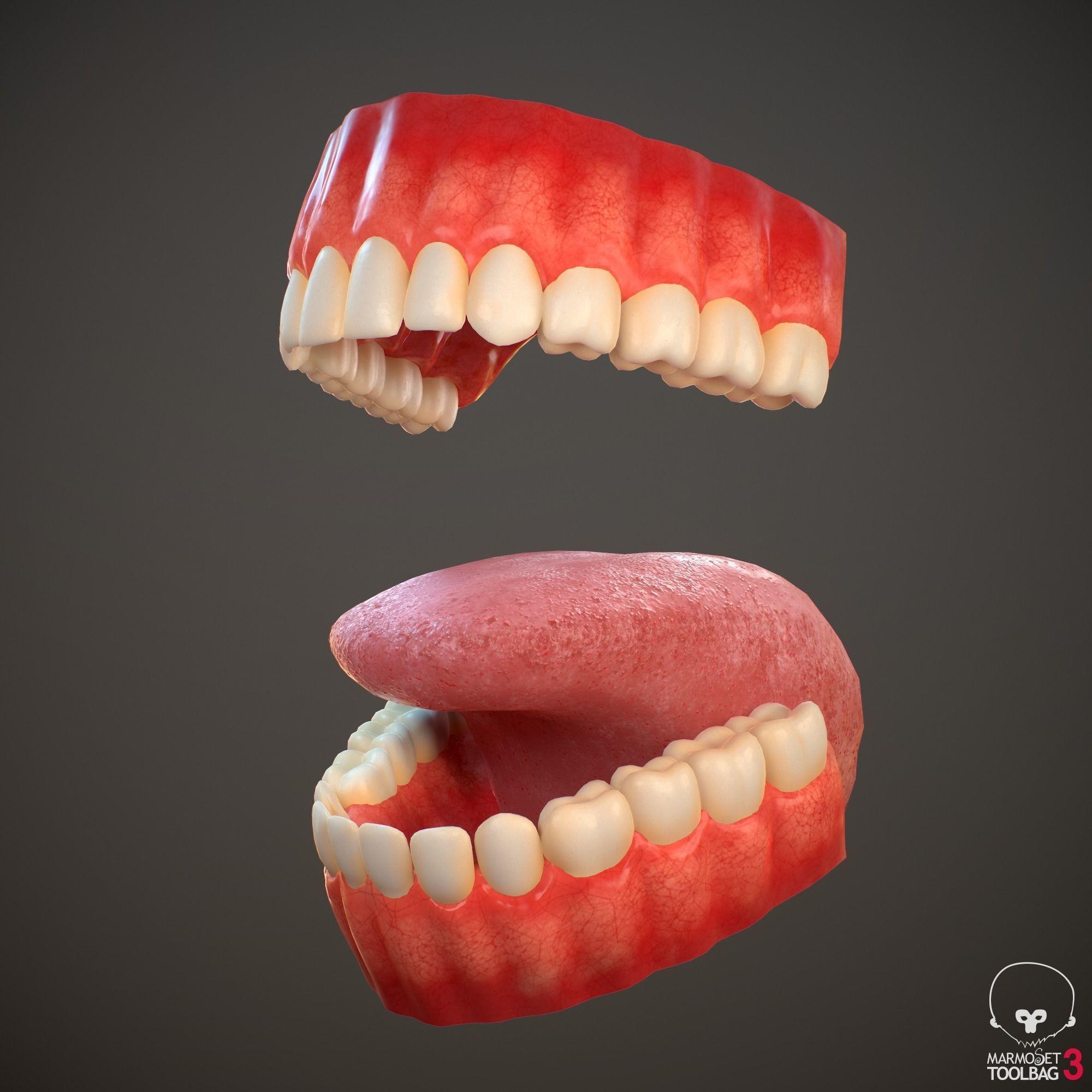 Teeth and Tongue PBR
