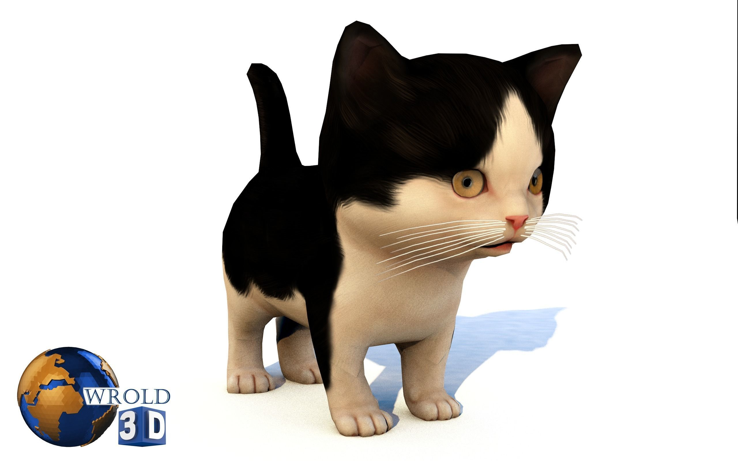 Cute Kitten Cat Rigged Lowpoly 3D Model