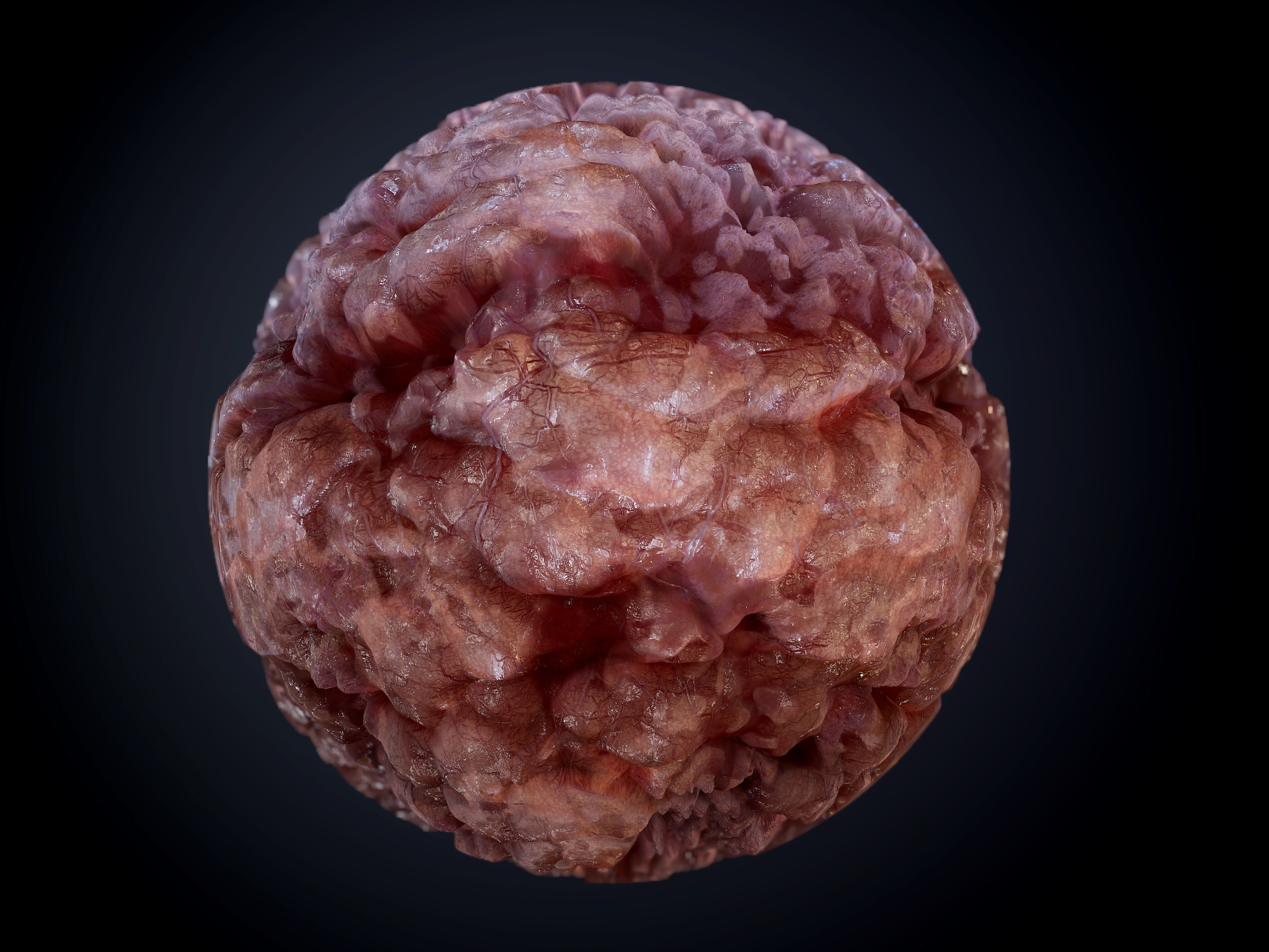 Gore Blood Guts Skin Cuts Seamless Pbr Texture 14 3d Model Veins and reddish spots can be found on the surface. gore blood guts skin cuts seamless pbr texture 14 texture