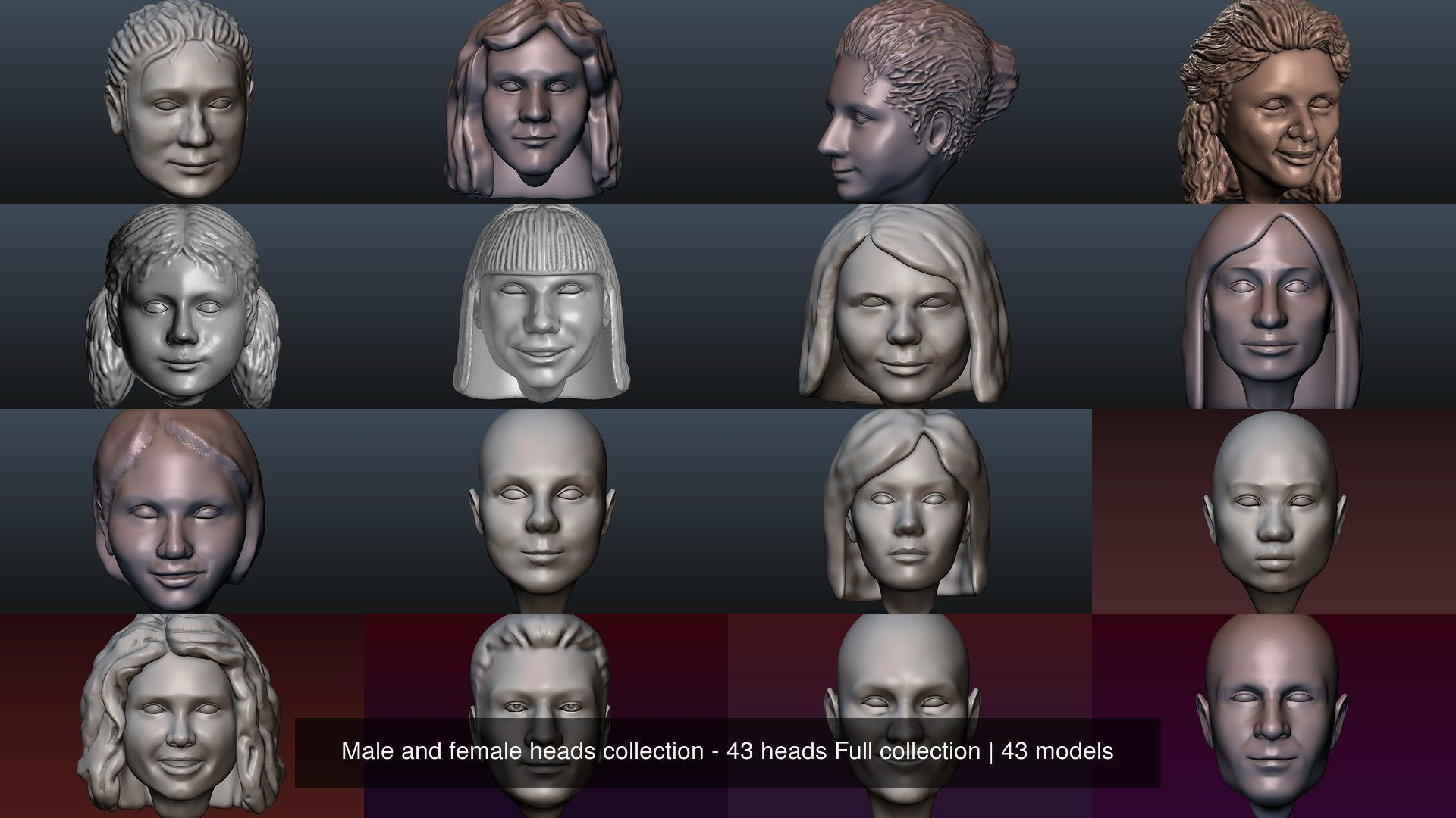 Male and female heads collection - 43 heads Full collection