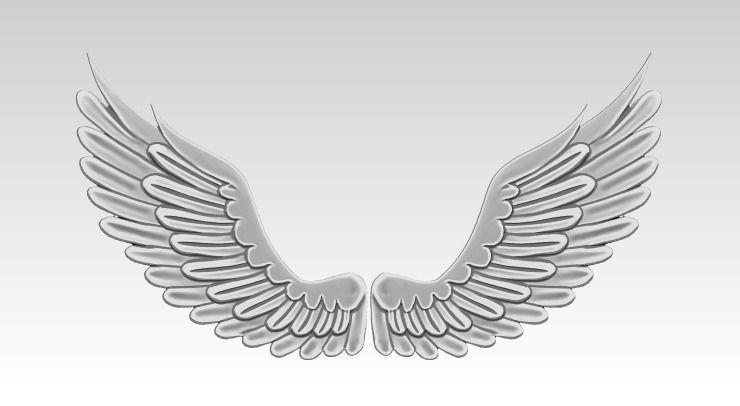 Relief Wings