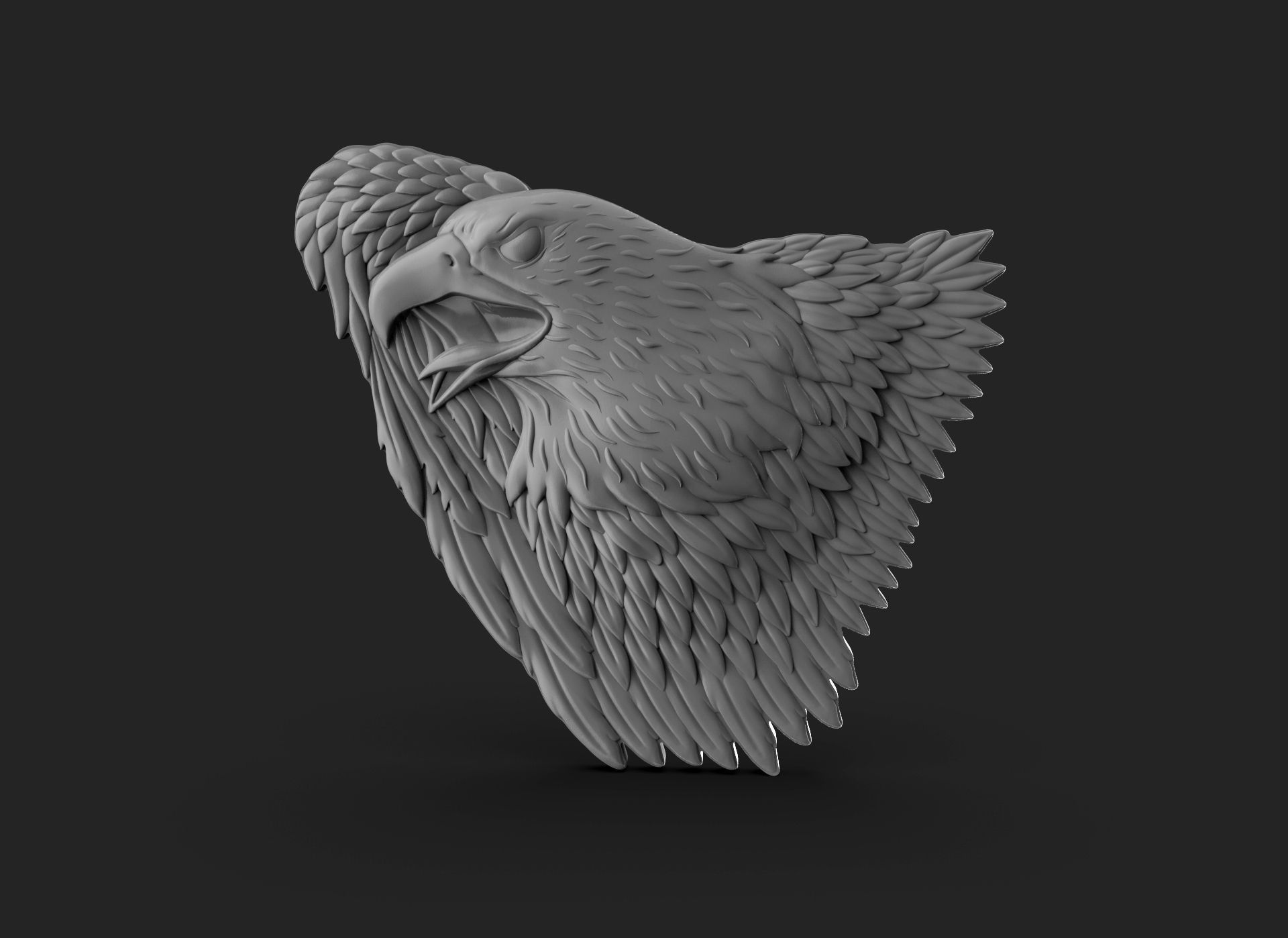 Eagle Bass Relief