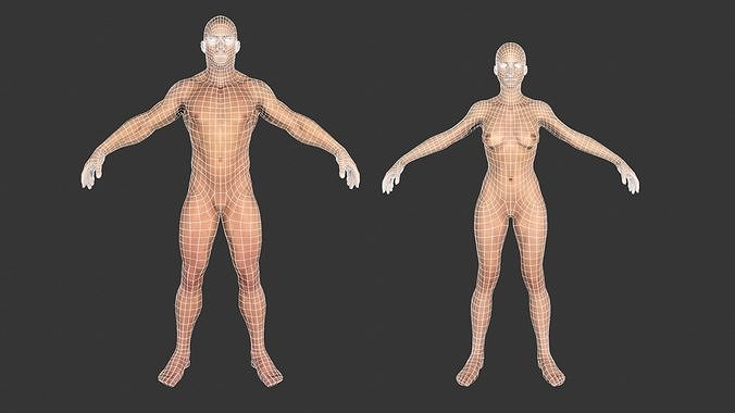 Low poly Base meshes Male and Female