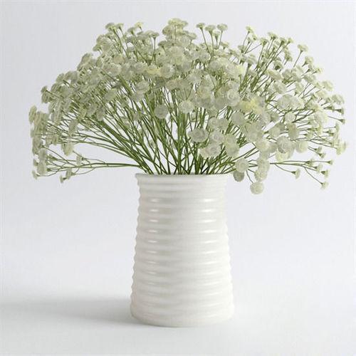White Modern Vase 30 3d Cgtrader