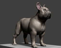 Dog Model 3D