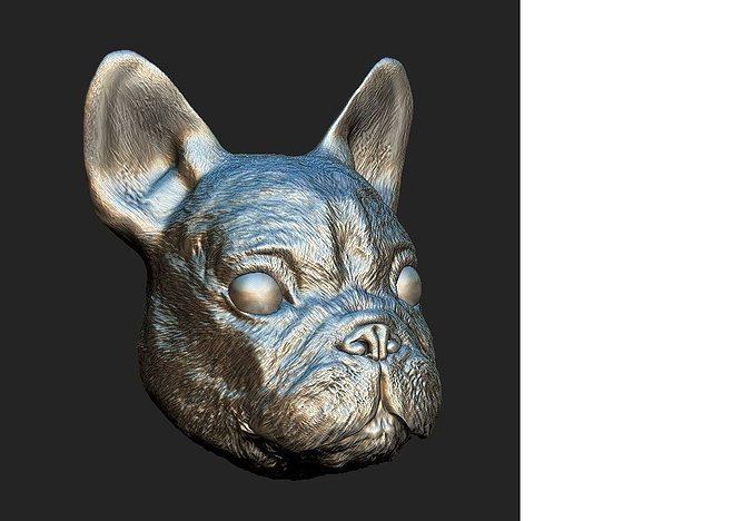 sculpted dog face  3d model max obj mtl fbx c4d ma mb stl 1