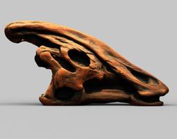 Dinosaur Skull 3D Model