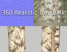 360 Tree Bark 6 3D asset