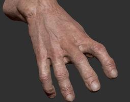 Detailed Hand 3D model