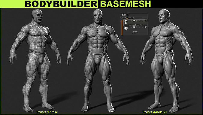 bodybuilder base mesh