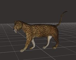 ultimate leopard Rigged 1 3D