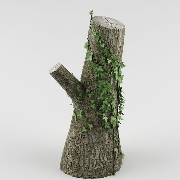 Tree 03 cut trunk | 3D model