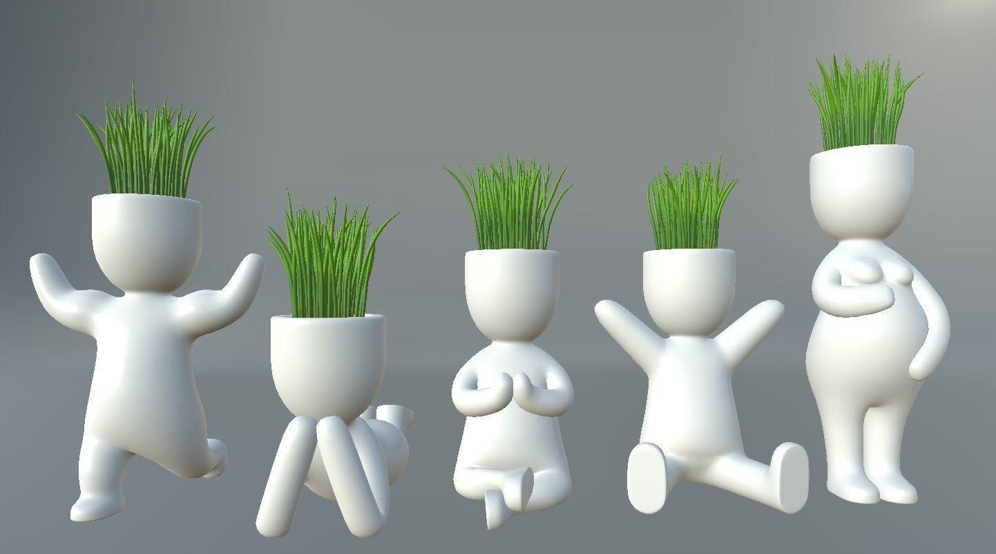 Plants in decorative pots
