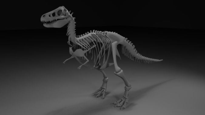 t-rex skeleton 3d model obj 1